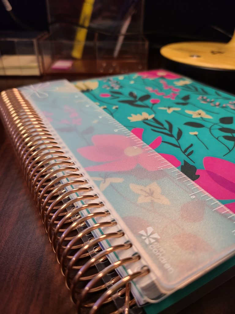 Erin Condren Daily Lifeplanner Duo PIN