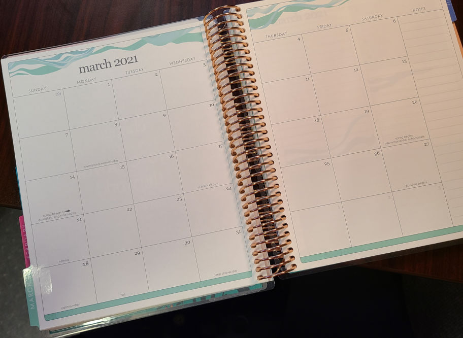 Erin Condren Daily Lifeplanner Duo